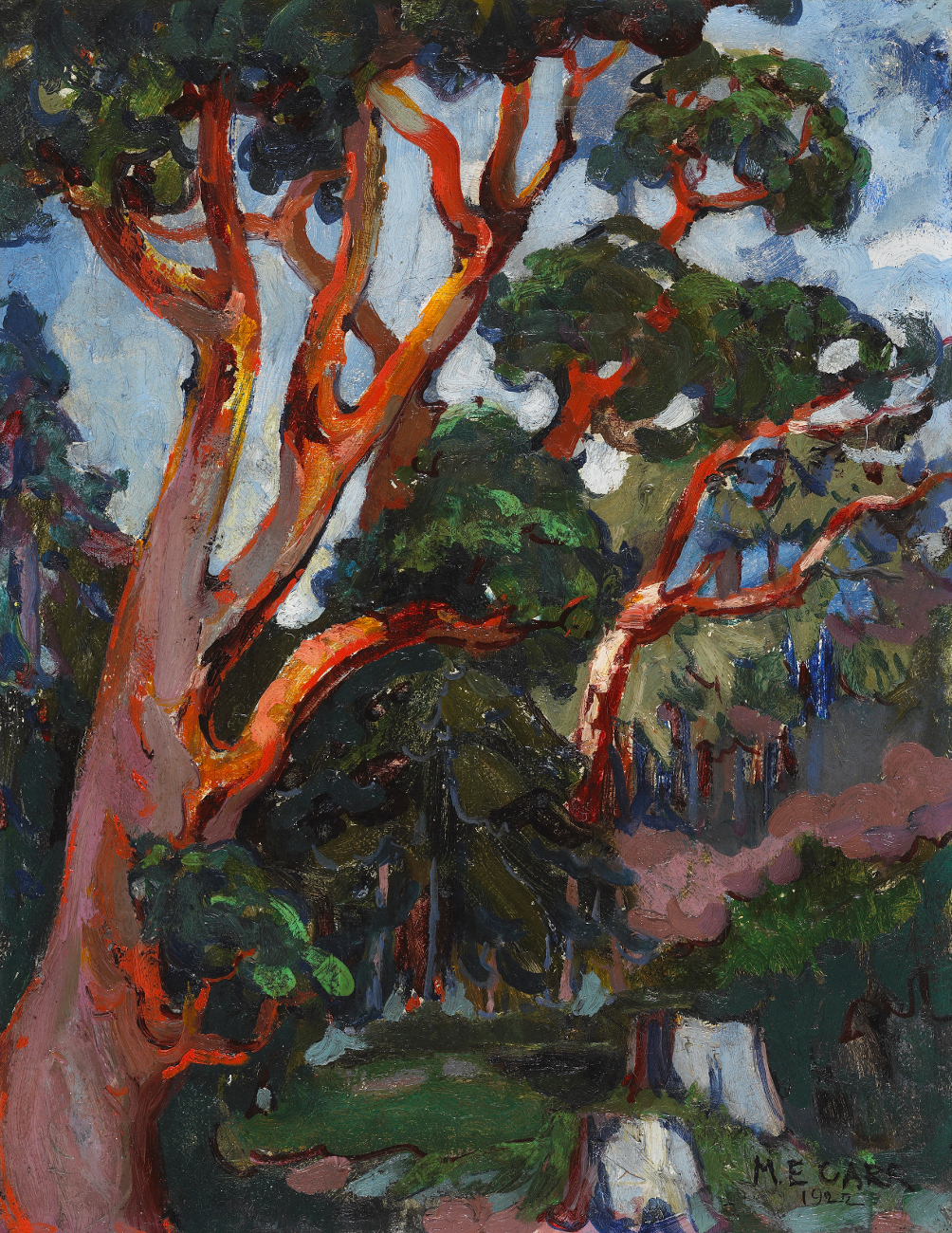 Emily Carr, Arbutus Tree, 1922, oiil on canvas, 46 x 36 cm, National Gallery of Canada, Ottawa, Thomas Gardiner Keir Bequest, 1990, Photo © NGC